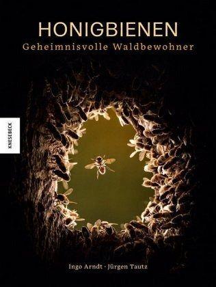 Honigbienen Geheimnisvolle Waldbewohner