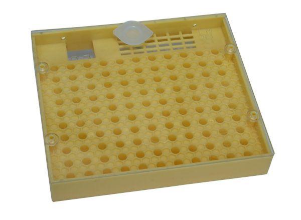 Nicot Zuchtkassette Cupularve einzeln