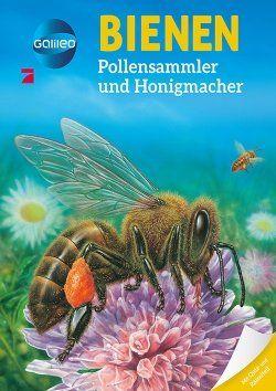 Galileo Bienen Buch