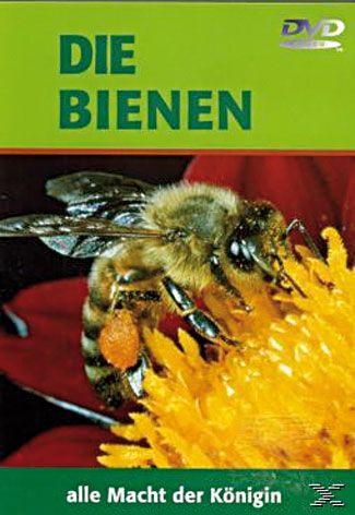 Die Bienen alle Macht der Königin