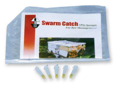 Pheromon - Schwarm Catch